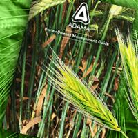 Barley Disease Mangement Guide