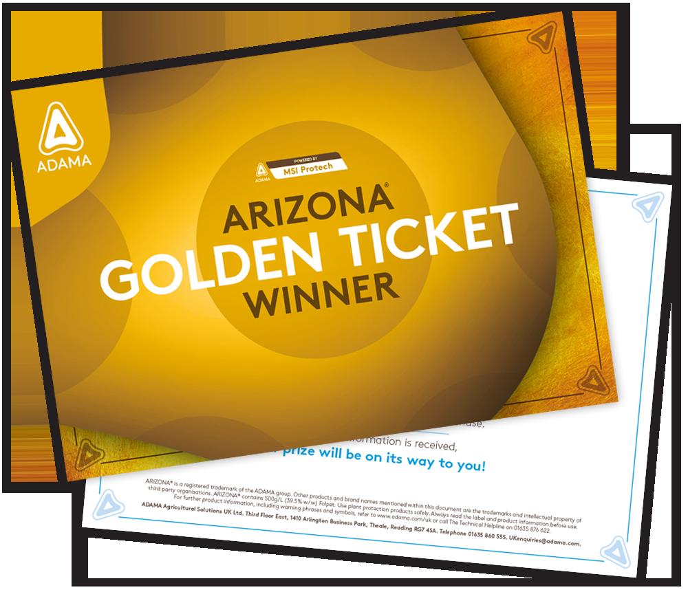 _Arizona-Comp_Golden-Ticket-Comp